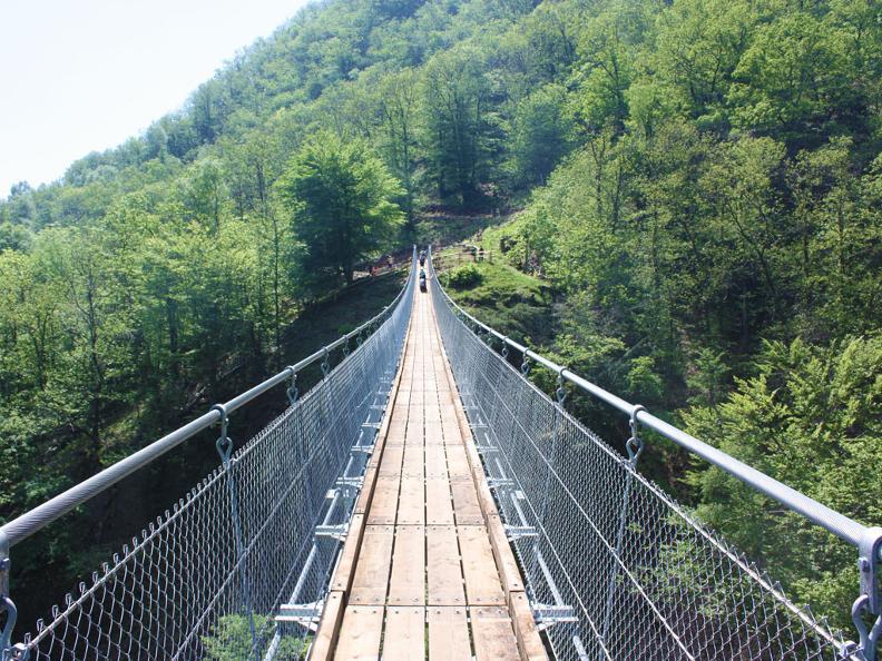 Monte Carasso Tibet Bridge - Taxi Lugano